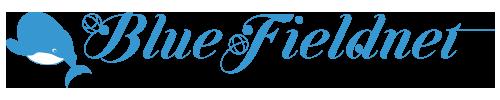 BlueFieldnet|海を愛するフリーランスのクリエイティブデザイナーによるWebサイト