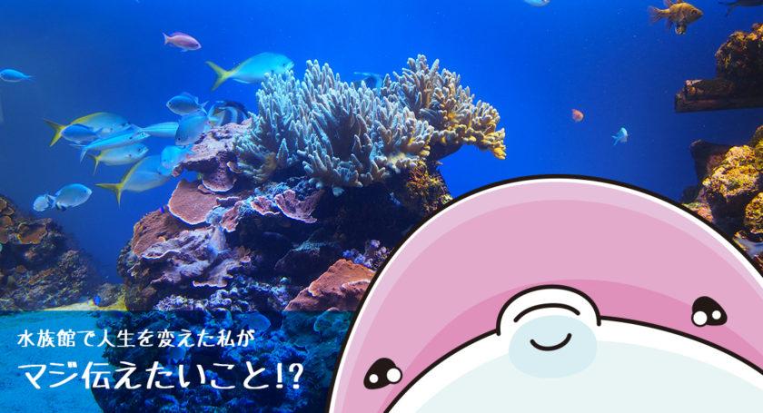水族館で人生が変わった私がマジで伝えたいこと!?
