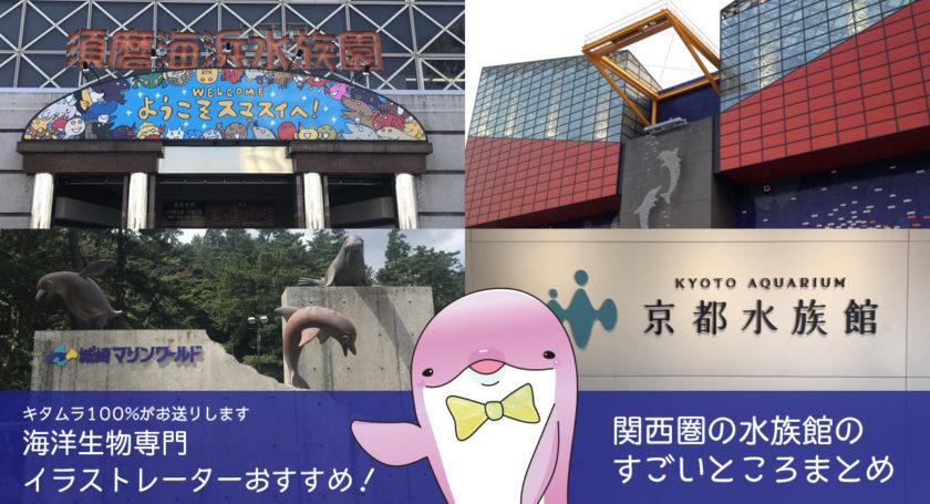 関西圏の水族館について、大阪在住Webデザイナー兼海洋生物専門イラストレーターの私が特徴や見どころをまとめました