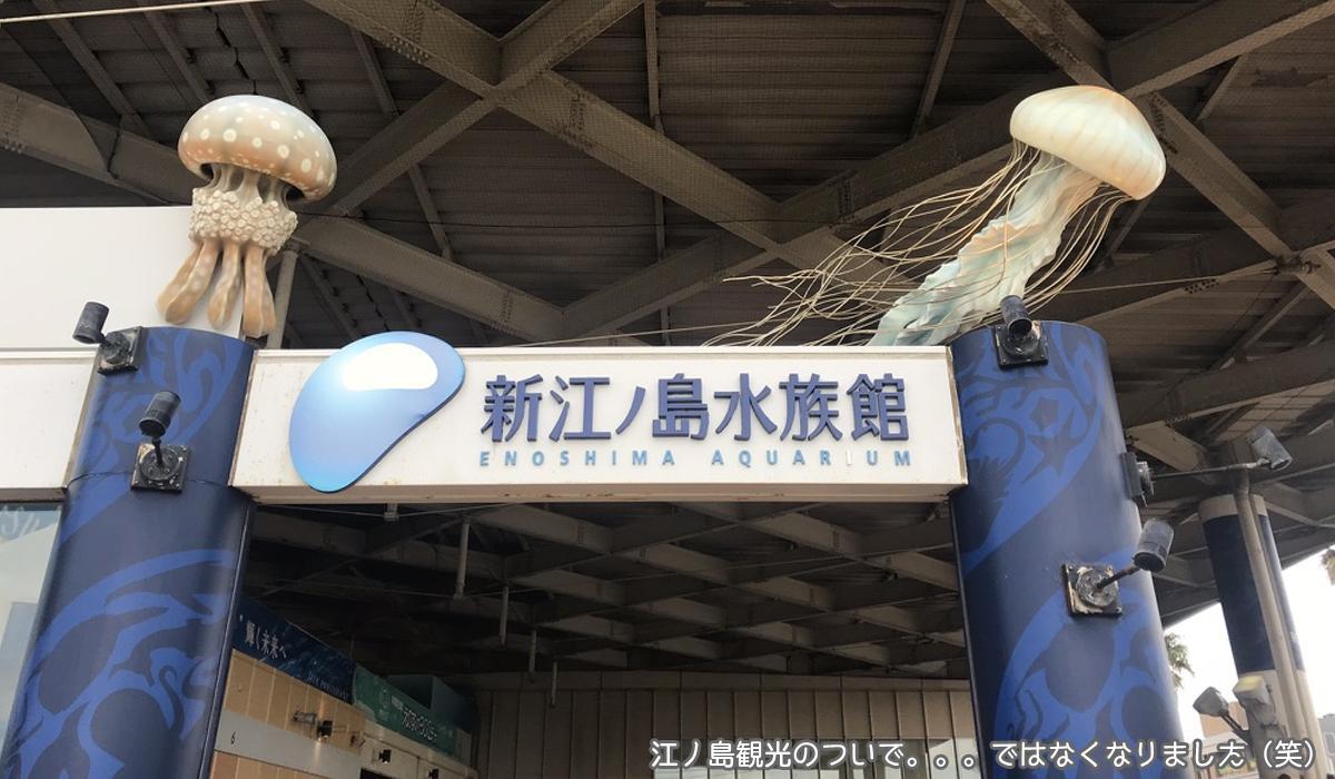 新江ノ島水族館のエントランス