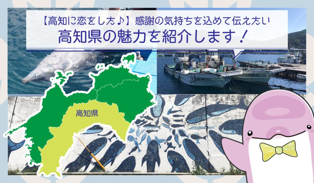 【高知に恋をした】海をこよなく愛するキタムラ100%が感謝の気持ちを込めて伝えたい高知県の魅力を紹介します
