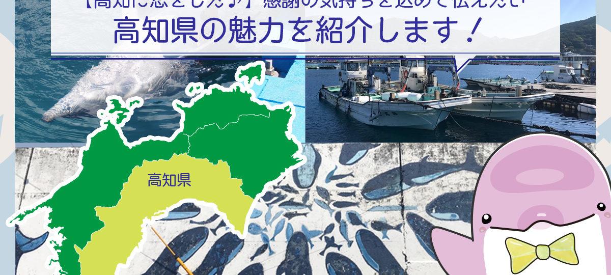【高知に恋をした】感謝の気持ちを込めて伝えたい高知県の魅力を紹介します!