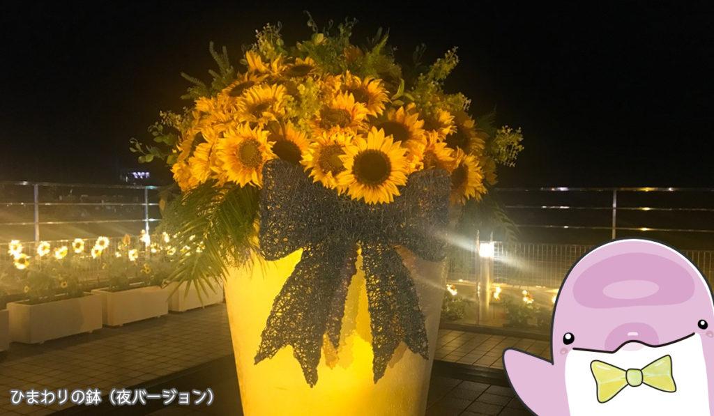 ひまわりの鉢・夜