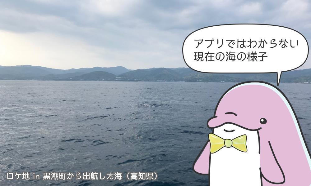 アプリではわからない現地の海の様子
