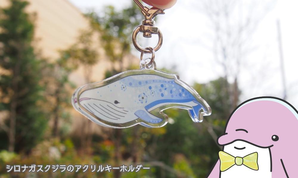 シロナガスクジラのアクリルキーホルダー