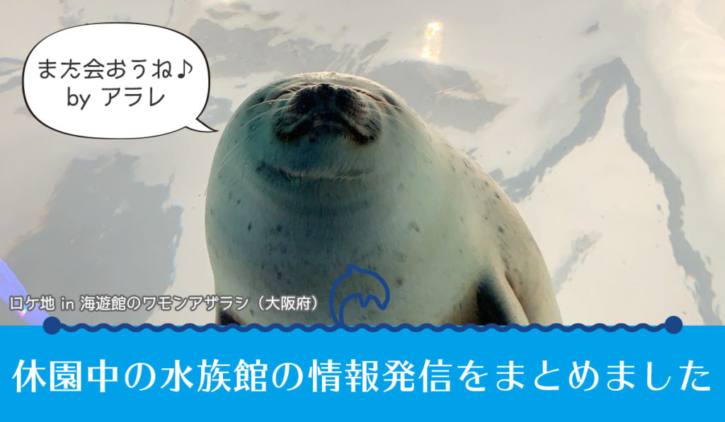休園中の水族館の情報発信をまとめました