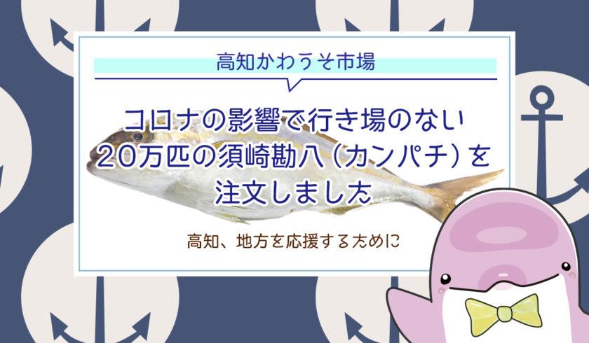 【高知かわうそ市場】コロナの影響で行き場のない20万匹の須崎勘八(カンパチ)を注文しました