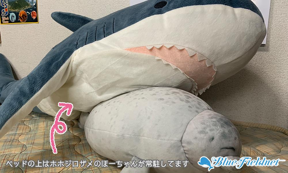 ベッドの上はホホジロザメのほーちゃんが常駐してます